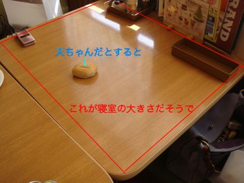 DSC02618のコピー.jpg