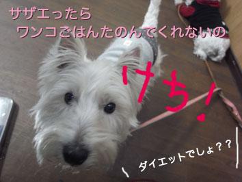 R0010832のコピー.jpg